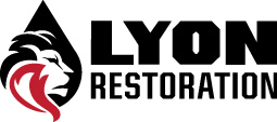Lyon Restoration