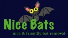 Nice Bats