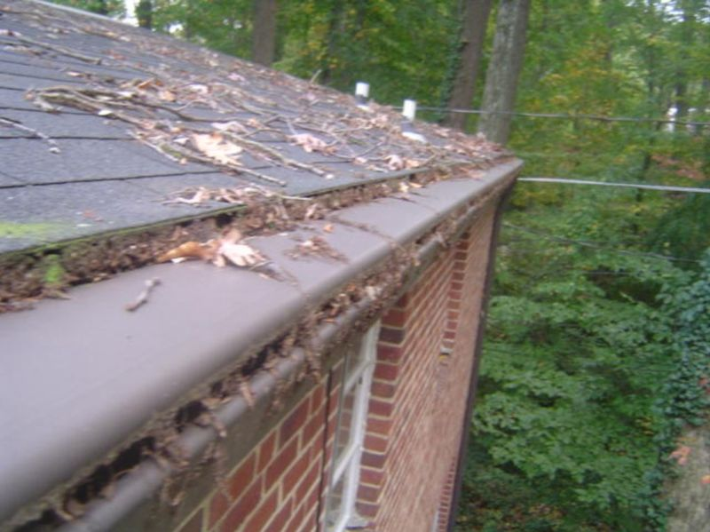 Image Result For Leaf Guards For Gutters